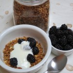 Healthy homemade granola with yogurt & berries from spatulaqueens