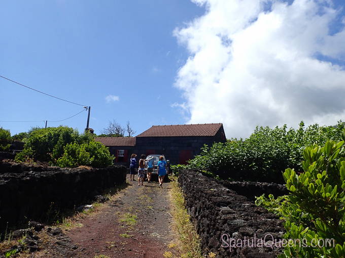 Road Trip: Azores - the path to Norberto's house