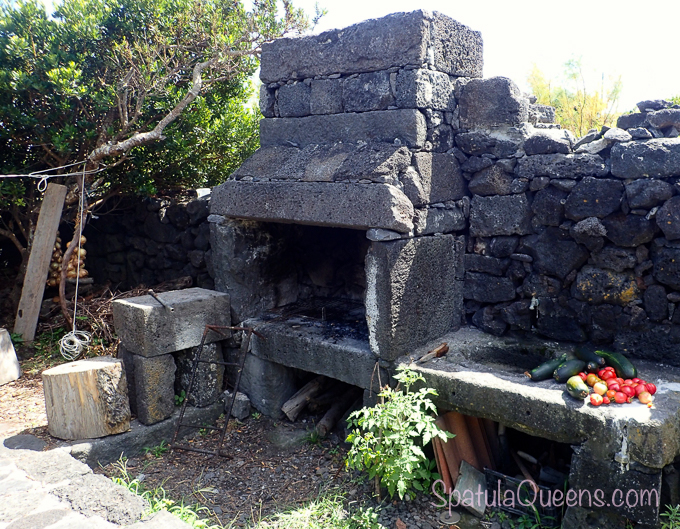 Road Trip: Azores - Norberto's yard