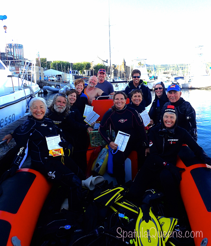 Road Trip: Azores - Our REEF Azores fish survey team