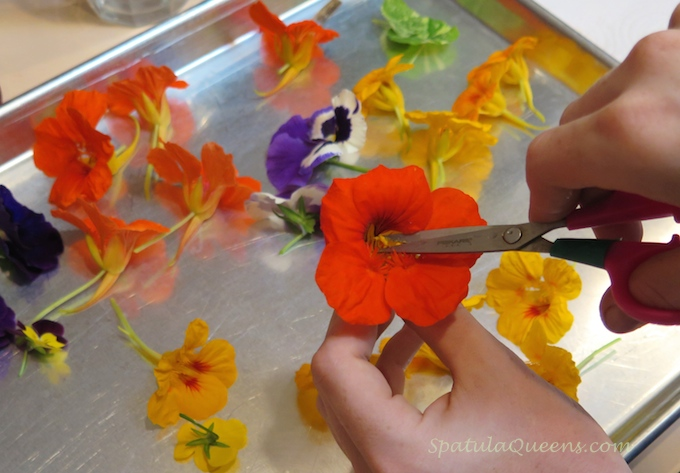 candied edible flowers recipe: Trim the stamen to remove pollen