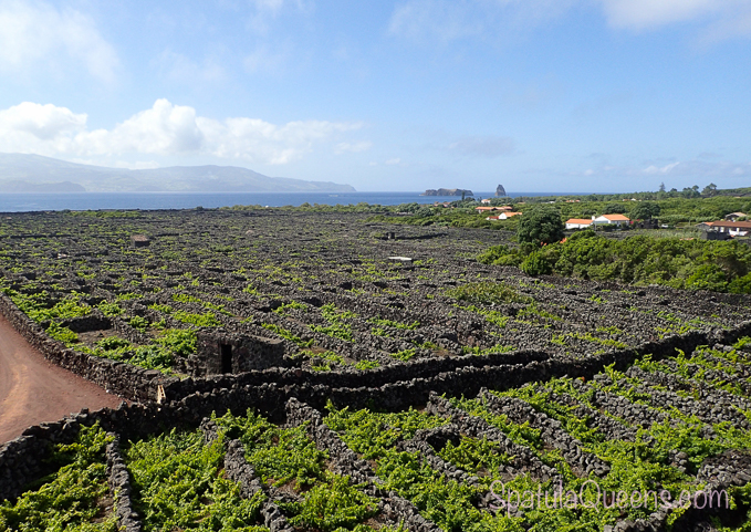 UNESCO World Heritage vineyards on Pico Island, Azores - Road Trip: Azores